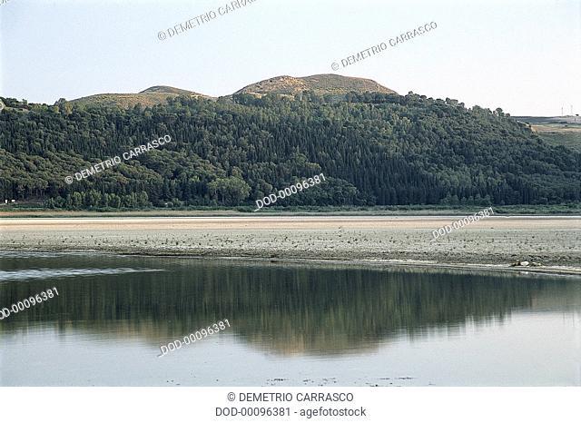 Italy, Sicily, Southwest Sicily, Enna, vegetation covering hillside below Rock of Demeter overlooking Lago di Pergusa
