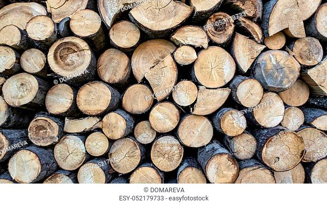 Sawn timber harvested in the woodpile, close-up
