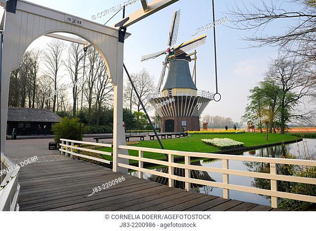 Dutch Windmill, Keukenhof Gardens, Lisse, Holland, Netherlands