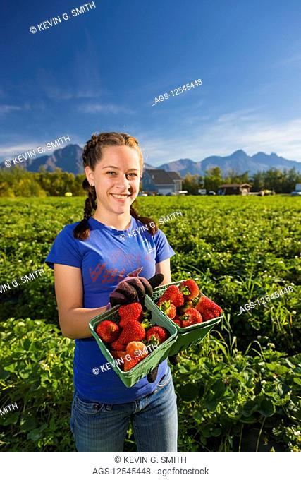 A young woman holds up boxes of strawberries, standing in a field of strawberry plants on a farm, with Pioneer Peak, Goat Mountain and Twin Peaks in the...