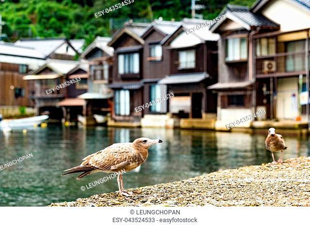 Seaside town in Ine-cho of Kyoto city of Japan
