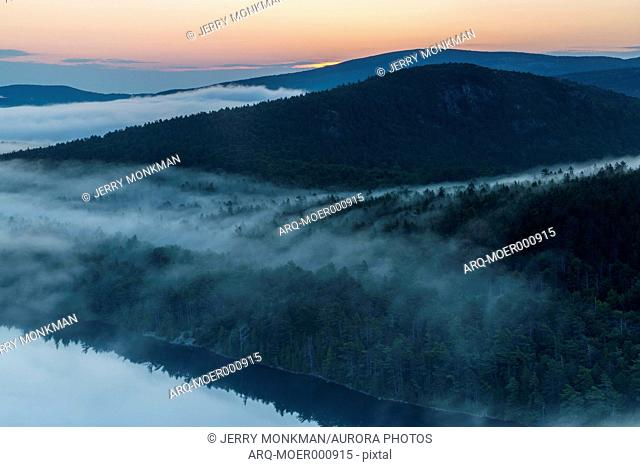 Fog in forest rising from Echo Lake at dawn in Acadia National Park, Maine, USA