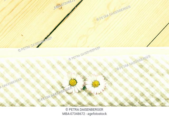 Two daisies lying on a checkered cloth napkin