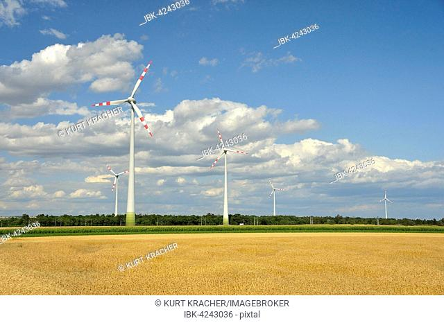 Windmills in between fields, Groß-Enzersdorf, Marchfeld, Lower Austria, Austria