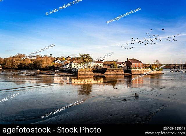 Scenic view of the harbor of Kinsale in the county of Cork, Ireland, with low tide and flock of birds fliying over water