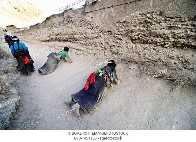 Tibetan pilgrims prostrating around the Labrang monastery in Gansu, China