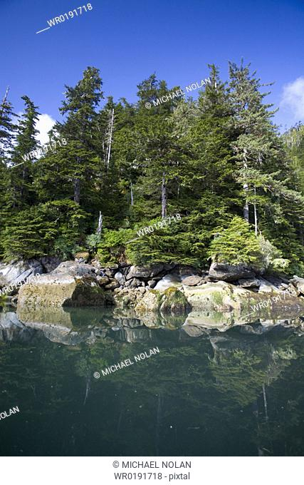 View of the calm waters of the shoreline in sunlight at Takatz Bay on Baranof Island, Southeast Alaska, USA Pacific Ocean