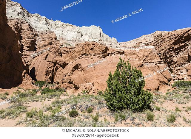 Red rock sandstone formations on the Grand Parade Trail, Kodachrome Basin State Park, Utah, USA