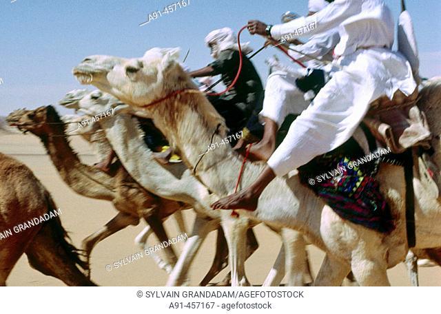 Tuareg camel race for the Sebiba festival. Tassili N'Ajjer. Sahara. Algeria