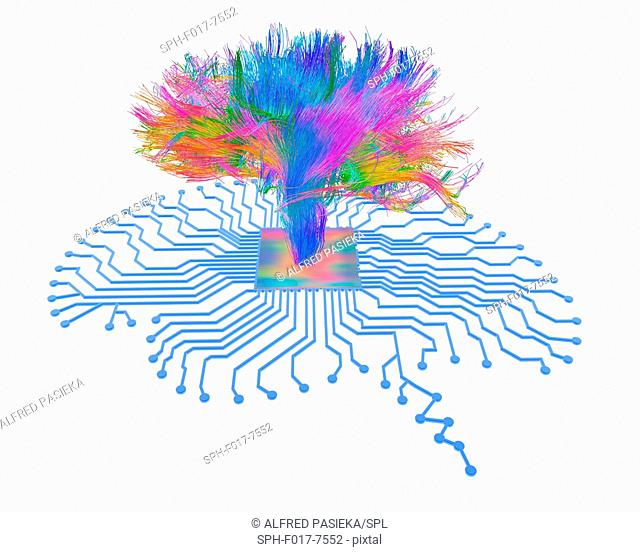 Brain shaped printed circuit board with central processor and white matter fibres of the human brain (3D diffusion spectral imaging (DSI) scan of the bundles of...