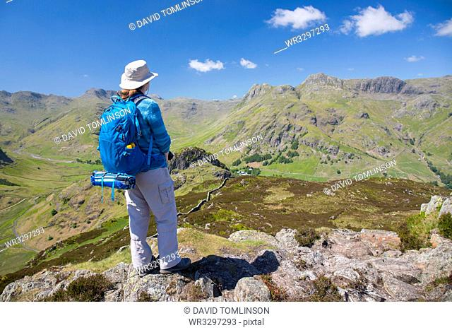 Hiker on summit of Lingmoor Fell, the Langdale Pikes beyond, Great Langdale, Lake District National Park, UNESCO World Heritage Site, Cumbria, England