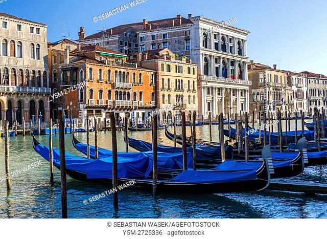Grand Canal seen from Riva del Vin, Venice, Veneto, Italy, Europe