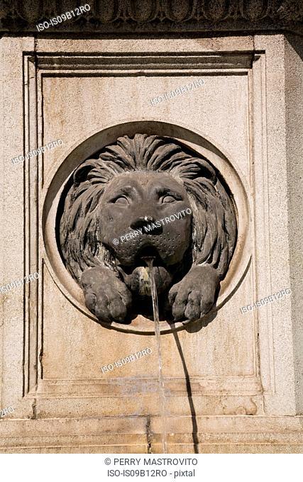 Stone carved lion water fountain, Vienna, Austria