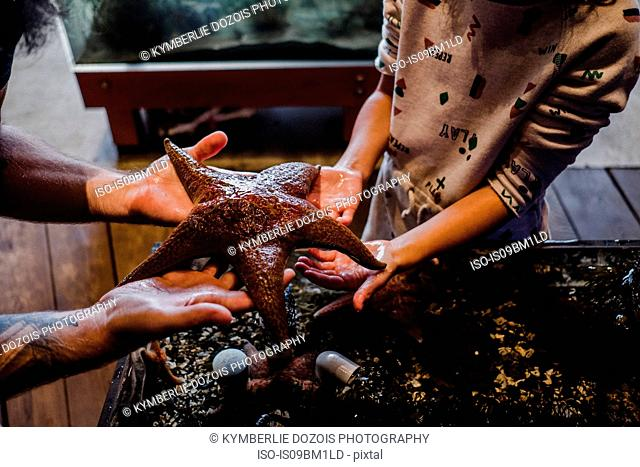 Father and daughter holding out starfish in aquarium