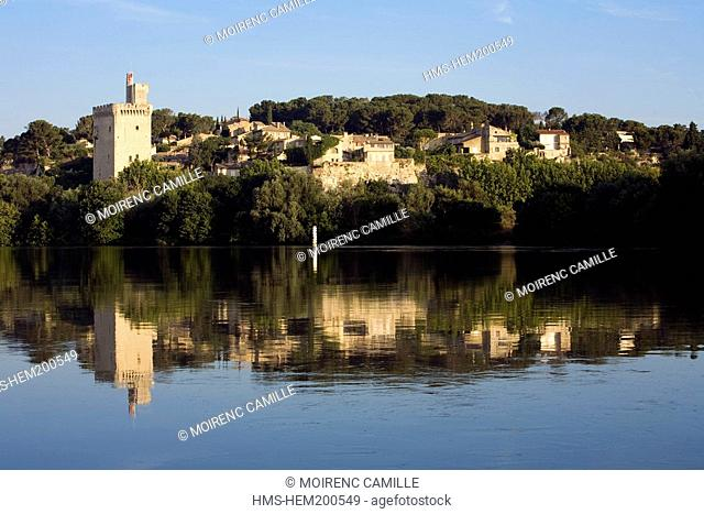 France, Gard, view on Villeneuve les Avignon from the Rhone River and Philippe Le Bel Tower
