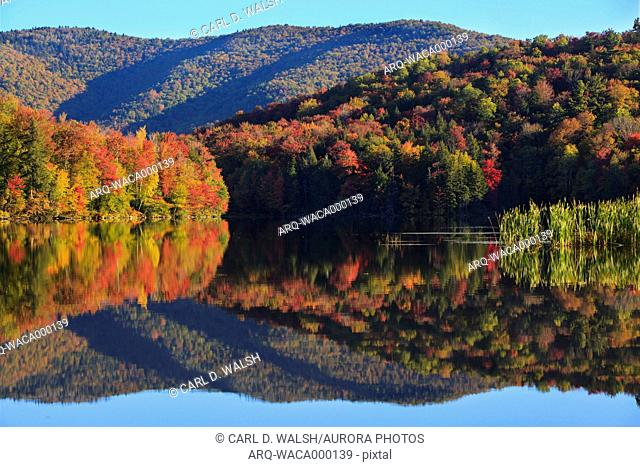 Peak New England foliage is mirrored in the water of Kent Pond in Killington, Vt