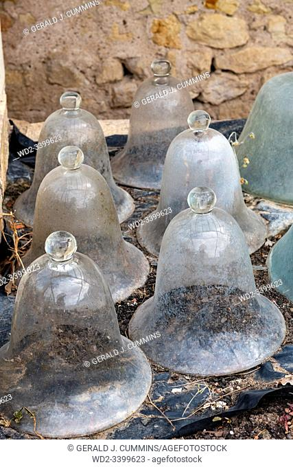 Europe France Chenonceaux : 2019-07 Glass cloche, or bells used as portable miniature greenhouses. They were attached end to end to form a tunnel and cover rows...