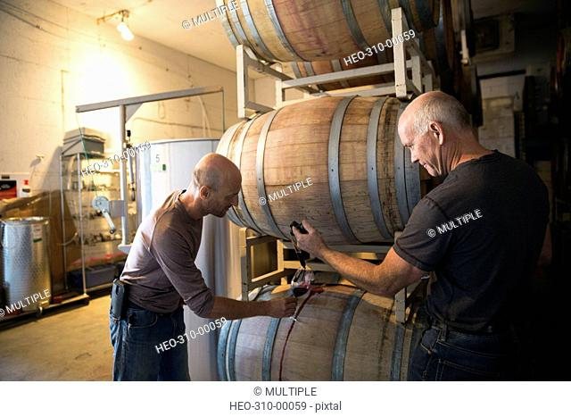 Vintners checking and tasting red wine in winery barrel room