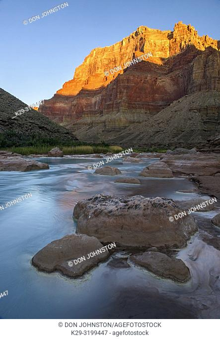 Little Colorado River- mineral-laden water with canyon wall reflections at dawn, Grand Canyon National Park, Arizona, USA