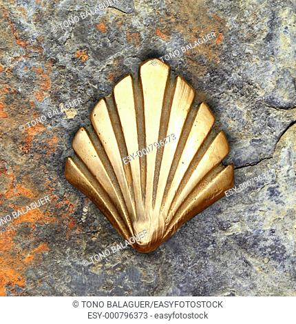 Saint James way shell golden metal on streets soil stone floor