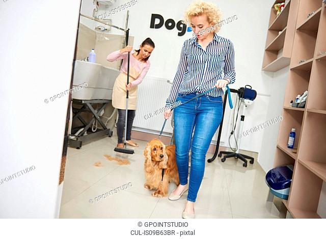 Woman with pet cocker spaniel leaving dog grooming salon