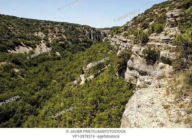 The canyon of the Rudrón. World Geopark of Las Loras. Burgos. Castilla y León. Spain