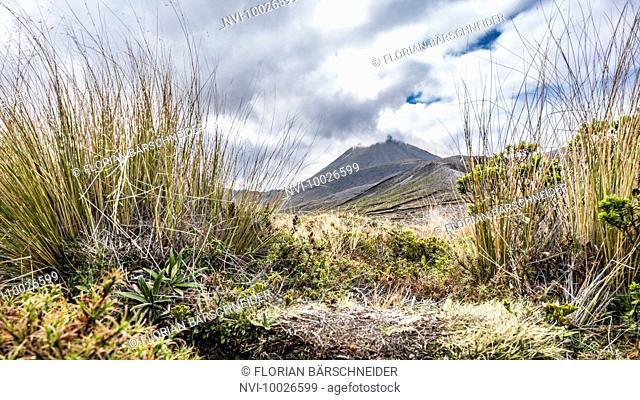 Tongariro National Park, overcast volcano, Lord of the Rings Location, Mordor, Tongariro, New Zealand