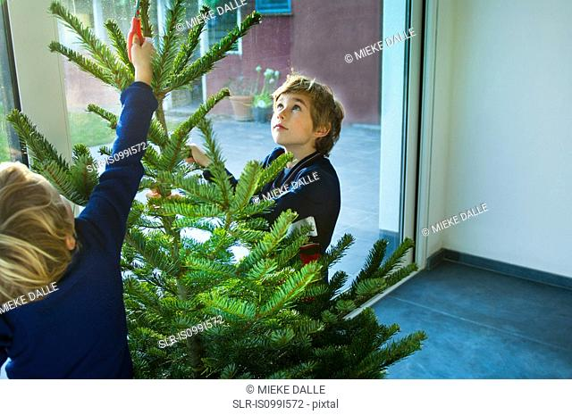 Boys decorating Christmas tree at home