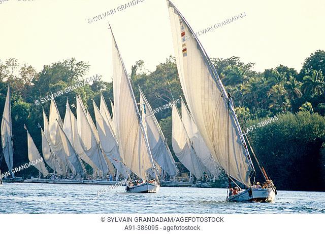 Feluccas on River Nile. Aswan. Egypt