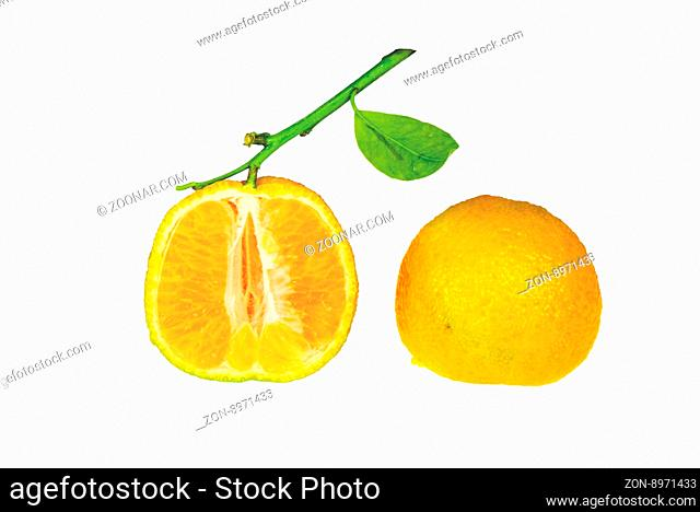 Clementine cutted in half isolated on white background