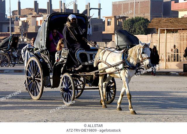 WHITE EGYPTIAN HORSE & CARRIAGE; EDFU, EGYPT; 09/01/2013