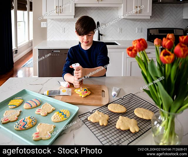 Young boy decorating Easter cookies on counter of a modern kitchen