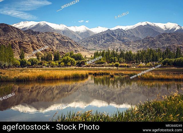 India, Ladakh, Leh, Himalayas reflecting in shiny lake