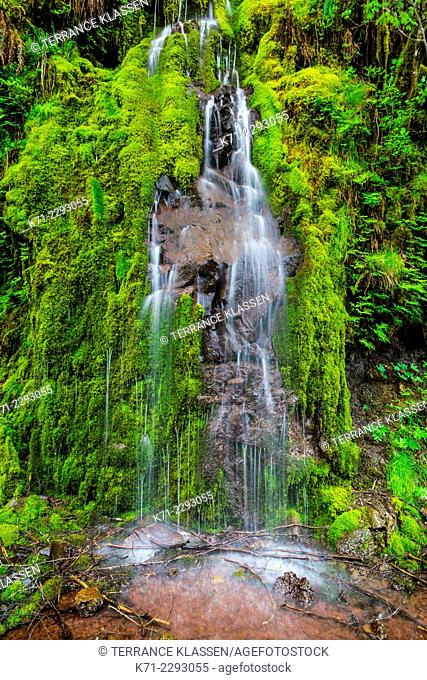 A roadside waterfall over moss covered rocks on the Willamette Hwy, Oregon, USA