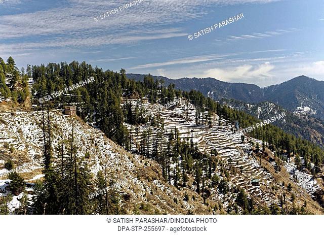 snow on hills at himachal pradesh, india, Asia