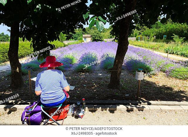 An artist paints the lavender in the garden at Maison de Sante Saint Paul Monastery at Saint Remy