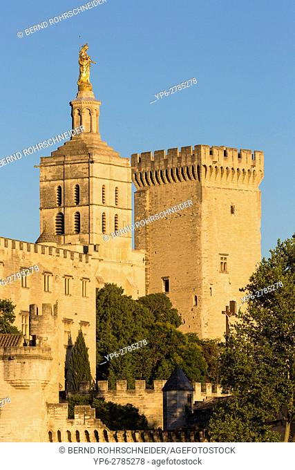 Papal palace (Palais des Papes) and cathedral Notre Dame, Avignon, France