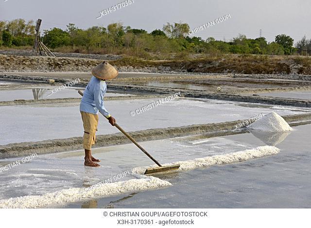 salt fields at Karangjahe, near Lasem, Java island, Indonesia, Southeast Asia