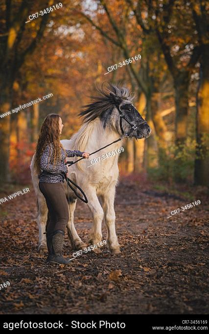Young woman with her icelandic horse enjoying a warm autumn day outside in Noord-Brabant, The Netherlands