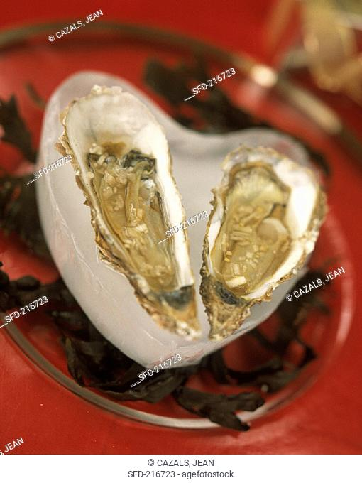 Oysters in a heart-shaped block of ice on a glass plate