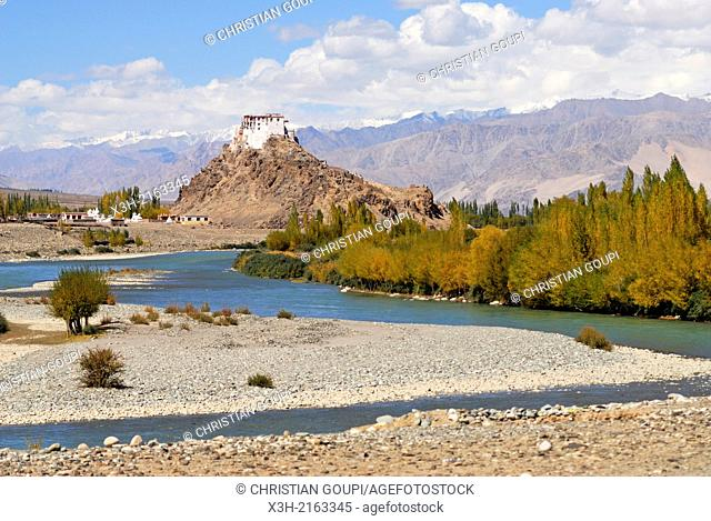 Indus River with the Tibetan Buddhist Stakna Monastery in the background, near Leh, Ladakh region, state of Jammu and Kashmir, India, Asia