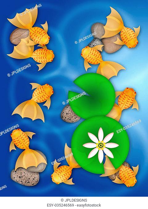Fancy Goldfish Swimming in Pond with Lily Pad Flower and Pebbles Illustration
