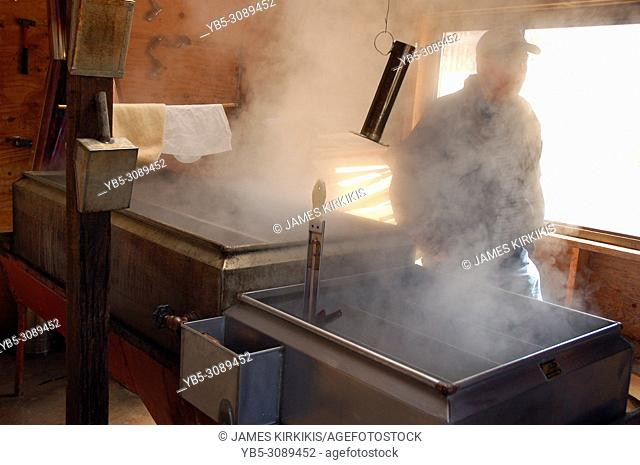 An adult man stands in the steam, created from the evaporation process in making maple syrup