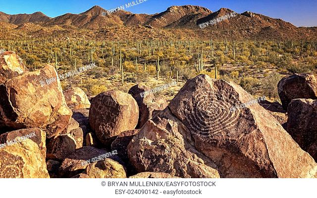 Hohokam petroglyphs are etched into rocks on the top of Signal Hill in Saguaro National Park