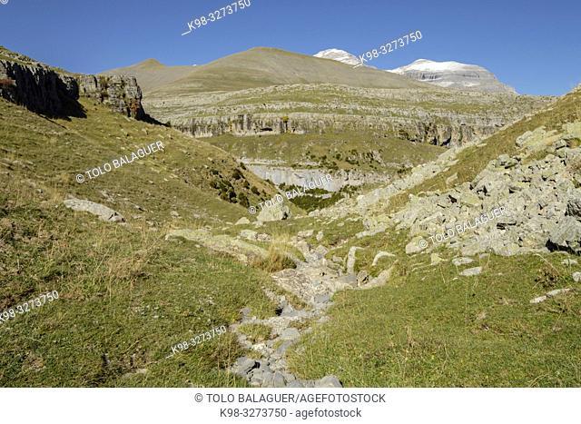 barranco de la Pardina, parque nacional de Ordesa y Monte Perdido, comarca del Sobrarbe, Huesca, Aragón, cordillera de los Pirineos, Spain