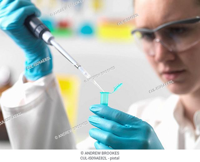 Laboratory worker pipetting sample into an eppendorf vial