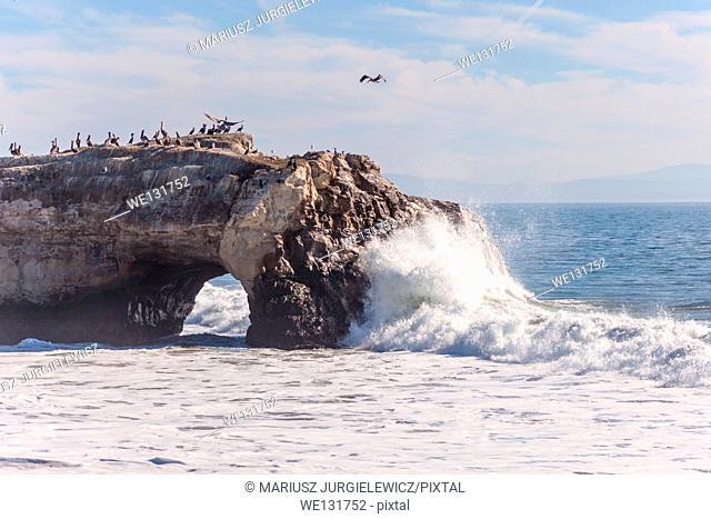 Natural Bridges State Beach is a 65-acre (26 ha) California state park in Santa Cruz, California in the United States