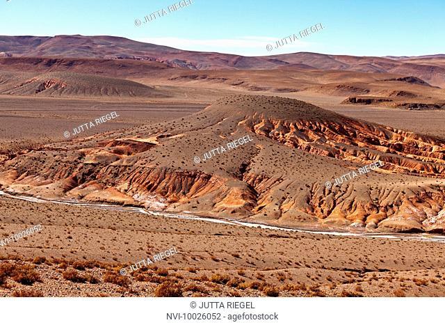 Puna desert, Salta Province, Argentina, South America