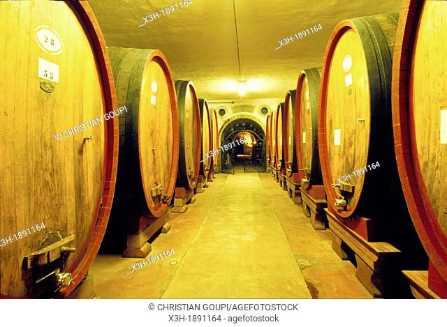 wine storehouse, Monsanto Castle, Chianti wine-producing region, Italy, Europe