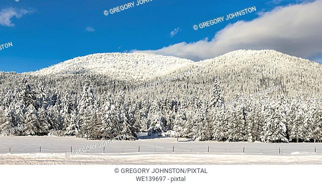 A panoramic image of snow covered Rathdrum Mountain on a clear day in north Idaho